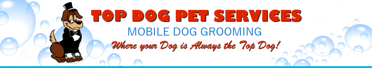 Top Dog Pet Services
